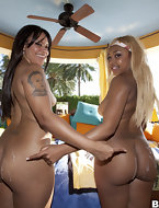 In today's feature is big ass Cocoa & Ms. Desire. These two ladies have lots of fat booty and love to make dick creme..